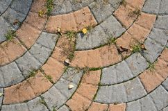 Gray Sidewalk Texture Fotografia Stock