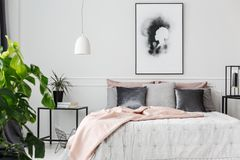 Pink blanket in feminine bedroom. Gray and silver cushions lying on a bed with white sheets and pink blanket in feminine bedroom interior stock photography