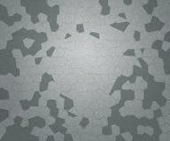 Gray Skin Texture. Light Gray Skin Texture Background Stock Photography