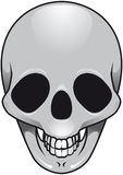 Gray Skull Photographie stock