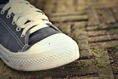 Gray Sneakers - accesorios y usable (zapatillas de deporte) foto de archivo libre de regalías