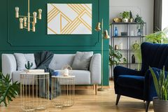 Gray sofa and armchair in modern elegant interior stock photography