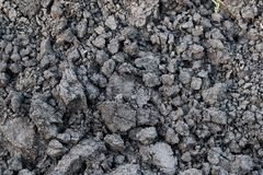 Gray soil, soil clod, dry soil, soil lump. Background from gray, dry soil lump Stock Photo