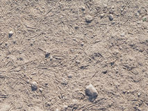 Gray soil Stock Photography