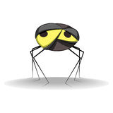 Gray spider Royalty Free Stock Image