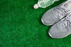Gray Sports Running Shoes sur l'herbe verte PS Photographie stock libre de droits