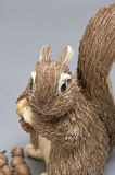 Gray Squirrel (ornement) Photographie stock libre de droits