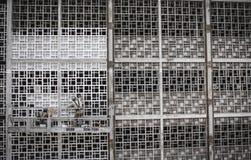 Gray Steel Fence Stock Photos