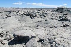 Gray stone desert stock images