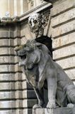 Stone lion with open mouth in Budapest Stock Images