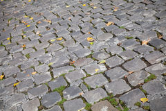 Gray stone pavement with autumnal leaves Royalty Free Stock Photography