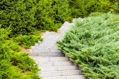 A gray stone staircase surrounded by green churches and bushes stock image