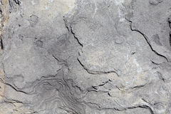 Gray stone texture background in direct sunlight royalty free stock photos
