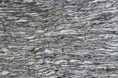 Gray stone texture wrinkles stock photo