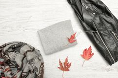 Gray sweater with space for text, a black jacket, scarf and autu royalty free stock photography