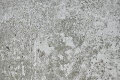 Gray texture concrete Stock Photos