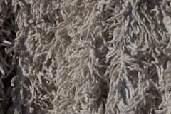 Gray texture fabric of wool and fur on the carpet. Gray background fabric of wool and fur on the carpet royalty free stock photography