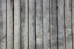 Gray texture of old thin wooden fence Royalty Free Stock Photography