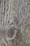 Gray texture of old wood, vertical Stock Images