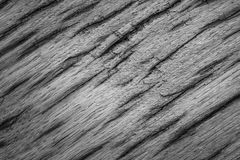 Gray texture very old oak wood Stock Images