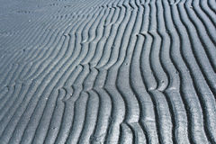 Gray texture waves Stock Image