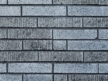Gray Textured Concrete Brick Wall-Achtergrondtekst Stock Fotografie