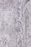 Gray timber board with weathered crack lines. royalty free stock photography