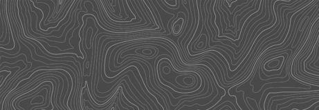 Free Gray Topographic Line Contour Map Background, Geographic Grid Map Stock Photos - 161659293