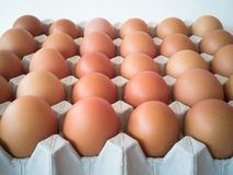 Gray tray of eggs with many eggs royalty free stock photos