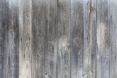Gray unpainted wooden door Stock Images
