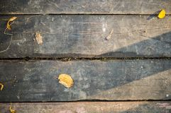 Gray vintage hardwood board at autumn. texture, background. Royalty Free Stock Photos