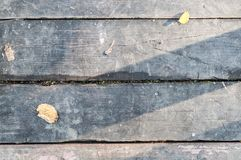 Gray vintage hardwood board at autumn. texture, background. Royalty Free Stock Photo