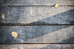 Gray vintage hardwood board at autumn. texture, background. Stock Photos