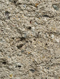 Gray  wall of concrete Stock Images