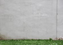 Gray wall with green grass Stock Image