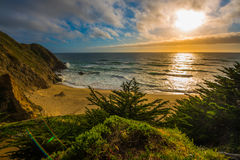 Gray Whale Cove Beach California Royalty-vrije Stock Afbeelding