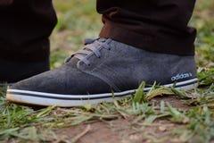 Gray White Adidas Sneaker stock image
