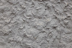 Gray white rough abstract stucco texture for background Stock Image