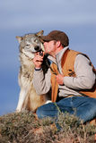 Gray wolf with an animal trainer Stock Image