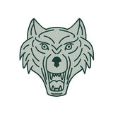 Gray Wolf Head Mono Line illustration libre de droits
