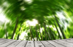 Gray wood floor and green bamboo tree background circle motion style Stock Images