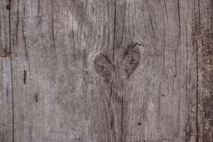 Gray Wood Surface background royalty free stock images