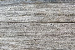 Gray wood texture. Abstract background Royalty Free Stock Image