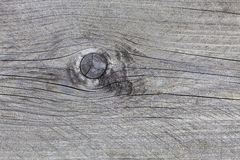 Gray wooden background with knothole Stock Photos