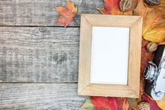 Gray wooden boards with vibrant withered autumn leaves, retro ca Royalty Free Stock Photography