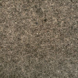 Gray wool felt Stock Images