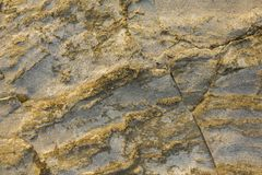 Gray yellow rock with deep relief, cracks and shadows. natural surface texture. A gray yellow rock with deep relief, cracks and shadows. natural surface texture stock photos