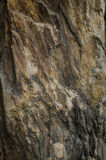 Gray and yellow rock texture. Abstract background of stone Royalty Free Stock Photo