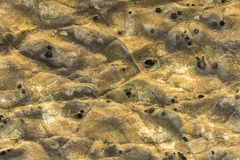 Gray yellow rock with white spots, scratches and black holes. natural rough surface texture. A gray yellow rock with white spots, scratches and black holes stock images