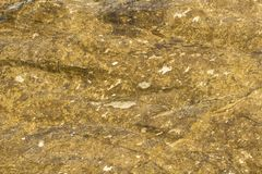 Gray yellow stone with white spots and shadows. natural rough surface texture. A gray yellow stone with white spots and shadows. natural rough surface texture stock image